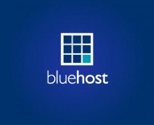 Bluehost WP Pro