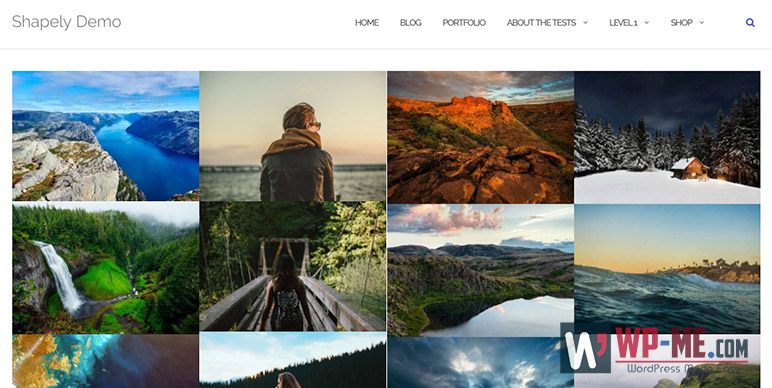 Shapely WordPress Theme